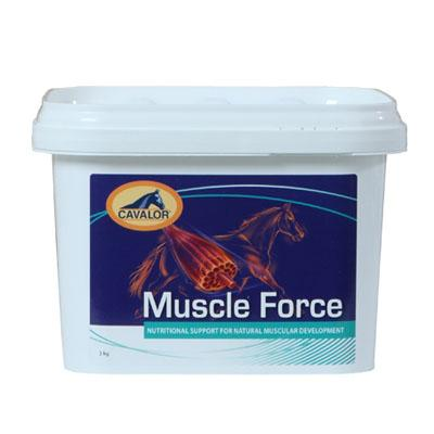 Muscle Force 900gr (Ex musclebuild)