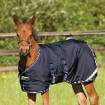 Manta Foal Potrillo medium exterior
