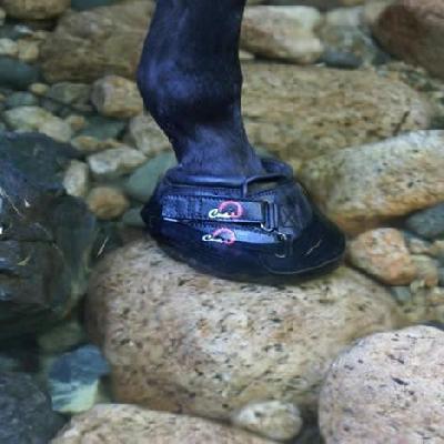 Zapato Cavallo High Sport Simple boots
