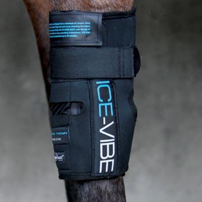 Protector Horseware Ice-Vibe Rodilla (Set Completo)