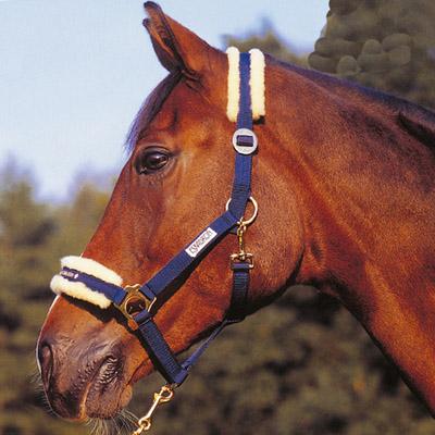 Accesorios el mundo del caballo for Cabezadas para caballos