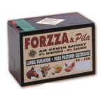 Pila modelo Forzza 9v 365w alcalina