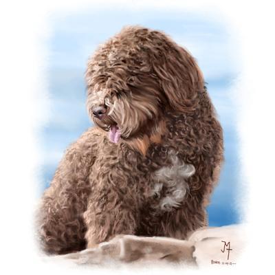 Retratos personalizados de tu mascota