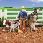 B5927 - Animales de la granja
