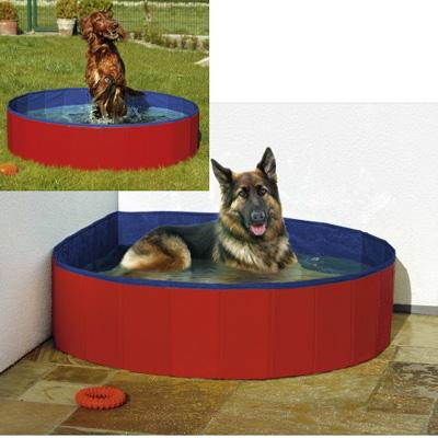 Piscina para perros 160x30 cm