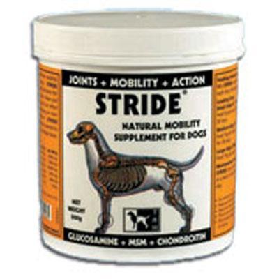Stride Powder 500gr