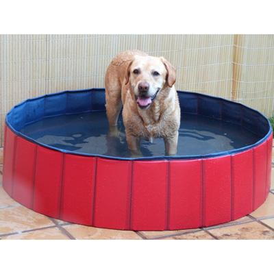 Piscina para perros 80x20 cm